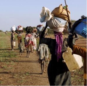 Study: Forced Migration - Climate Change Fueling Conflicts in Kenya