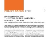 Policy Paper: The WTO after Nairobi